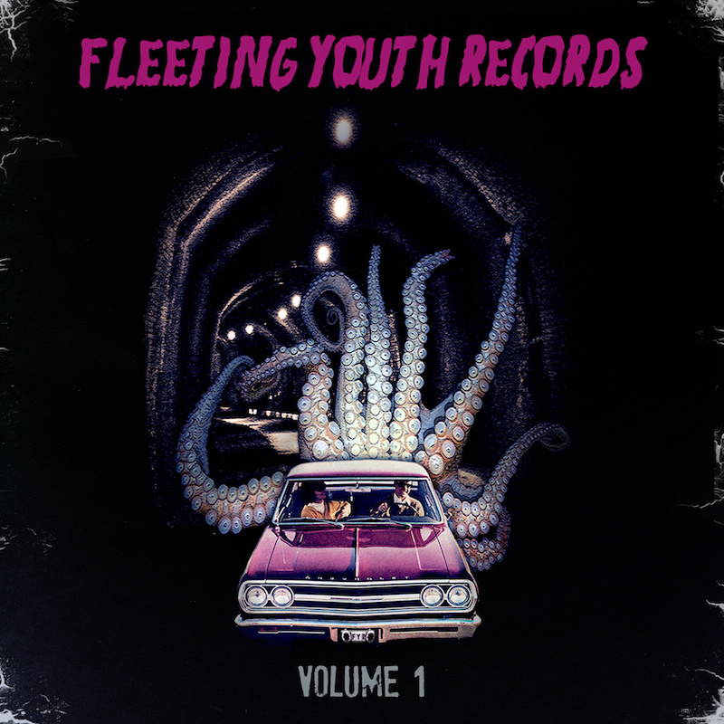 Fleeting Youth Records Volume 1